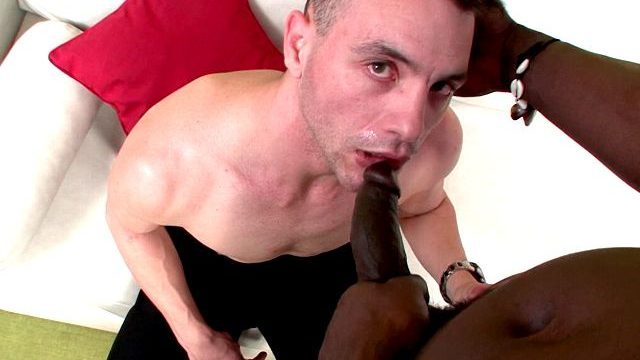 Aroused Dark Haired Faggot Wedding Tackle Licking Canu's Phat Dark-hued Manstick On His Knees